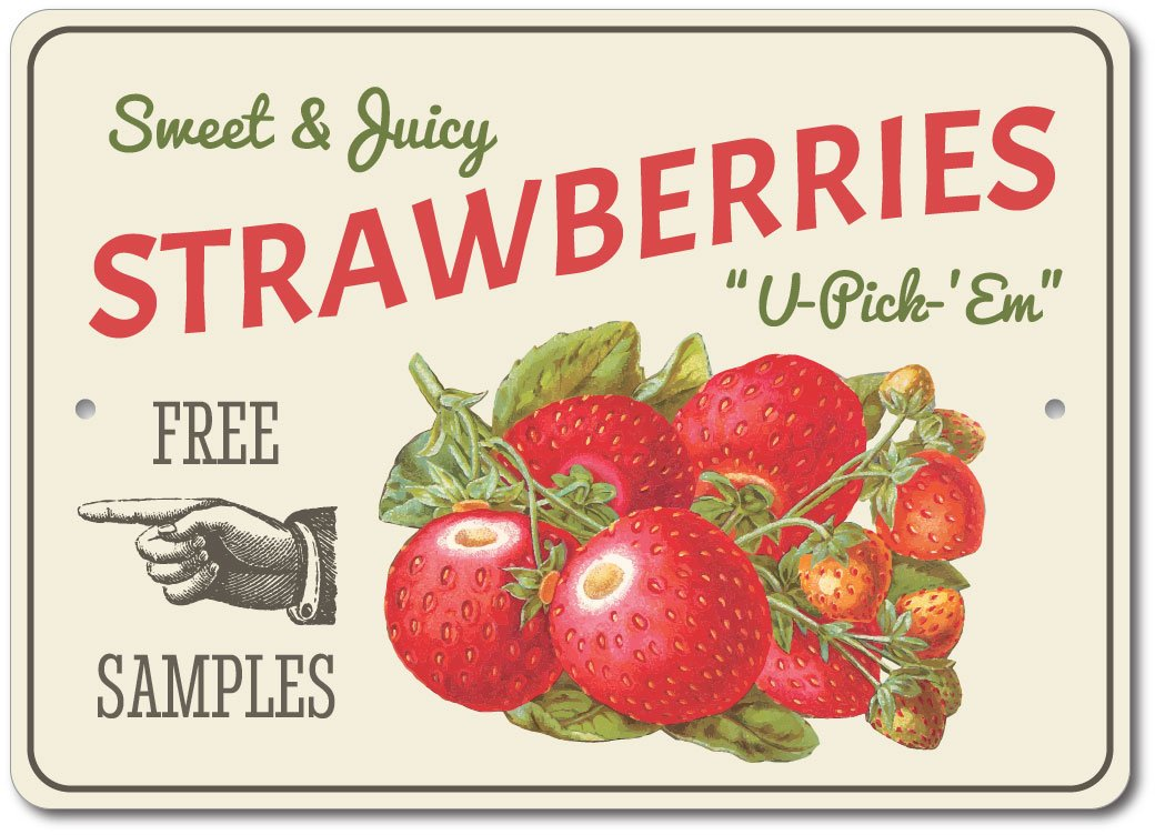 Strawberries Sign Berry Kitchen Strawberry Farm Metal Wall Decor Aluminum Ebay